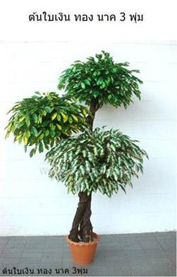 ต้นไม้ประดิษฐ์