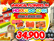MAGICAL FLOWER IN HOKKAIDO 6DAYS 4NIGHTS