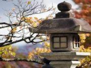 ทัวร์ญี่ปุ่น HOKKAIDO ซุปตาร์ แดงจ๊าด ส้มจี๊ด 5 วัน 3 คืน