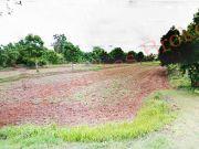 2904001 ขายที่ดิน 116 ไร่ ที่อำเภอคง โคราช