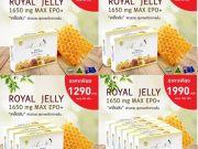 นมผึ้งAngelsecret,นมผึ้งแองเจิลกล่องเล็ก,นมผึ้ง1650mg6%10HDA,นมผึ้งแองเจิลซีเครท30เม็ด