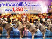 โปรโมชั่น บัตรชมโชว์ภูเก็ตแฟนตาซี ราคนไทย
