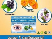 วิตามินบำรุงสายตาwealthyhealth, Wealthy Health Maxi-Visual, Bilberry 10000 Plus