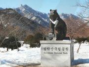 ทัวร์เกาหลี KOREA PLUS JOY SNOW