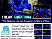Business for Sale Freak Aquarium Pattaya